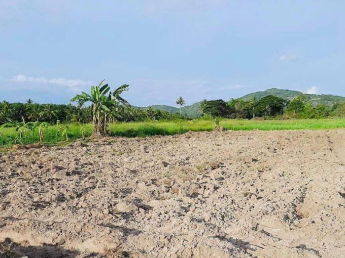 Beautiful Land Hua Hin for Sale